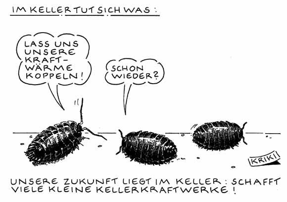 Kellerkraft_01.jpg